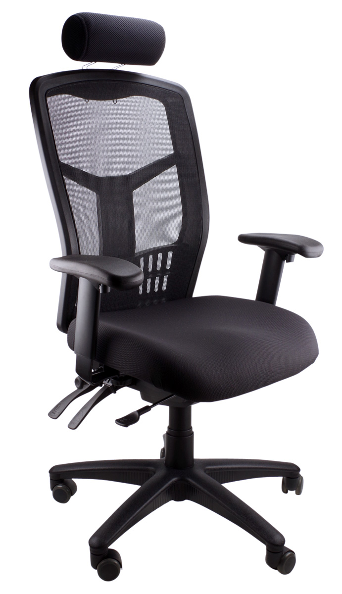 Mesh Deluxe executive office chair